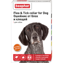 Ошейник Flea & Tick collar for Dog от блох и клещей для собак оранжевый 65см